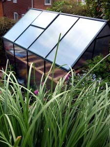 Walton Polycarbonate Greenhouse