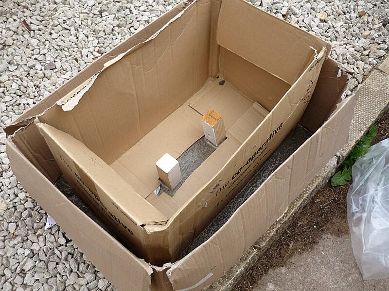 Cardboard Mold