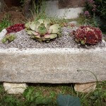 Hypertufa planters – how to make [Ultimate guide]