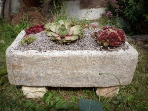 Make your own hypertufa pots and stone troughs